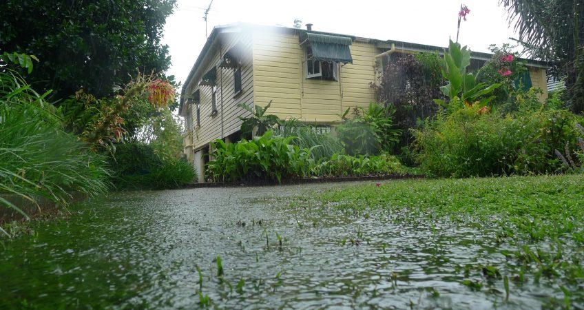 Flooding lawn